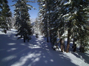 Lots of varied conditions while Sierra Nevada skiing.